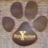 Pets Y Motion